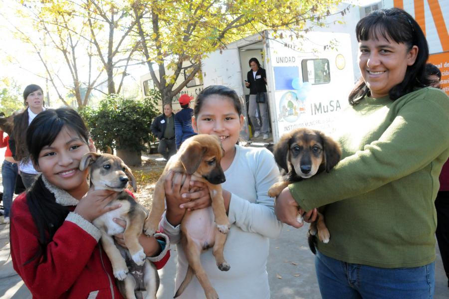 Dos proyectos por los derechos de los animales