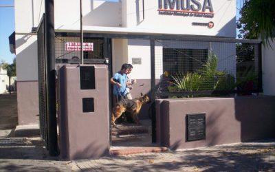 Se promulgaron dos ordenanzas relacionadas al IMuSA