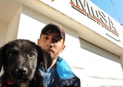 Protocolo de ingreso y permanencia de animales en el IMuSA